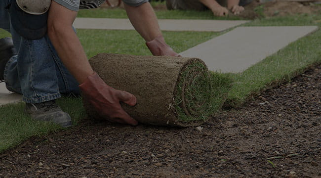 Winnipeg Lawn Care